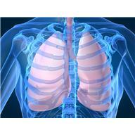 Can chronic chest infection exist when one feels that it is present but there is no cough, phlegm, shortness of breath and xrays are negative?
