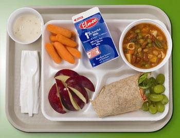 What's a healthy lunch for a highschool student to make quickly before school?