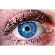 What can be the reason for a twitching eye?