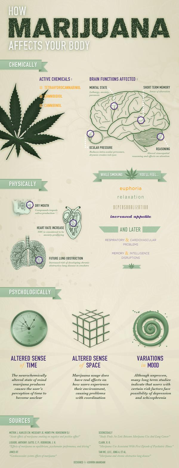 What long term negative effects does marijuana have on the body?