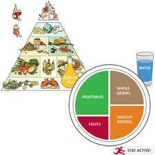 Please show a picture of the food pyramid and plate?