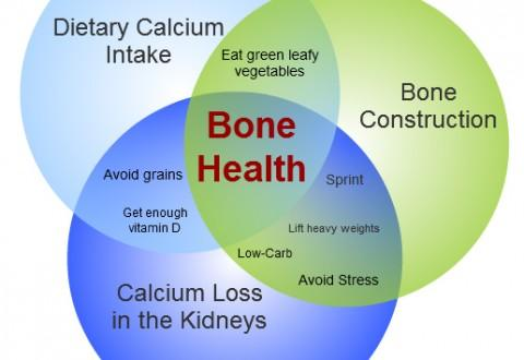 How do vitamins and minerals interact to maintain bone health?