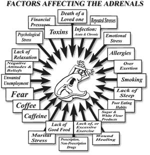 Can u fix moderate adrenal fatigue? Gaining too much weight, tests rule out  everything else, was under severe stress for over a year. Is it fixable?