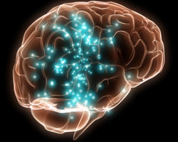 How does high blood sugar effect the brain?