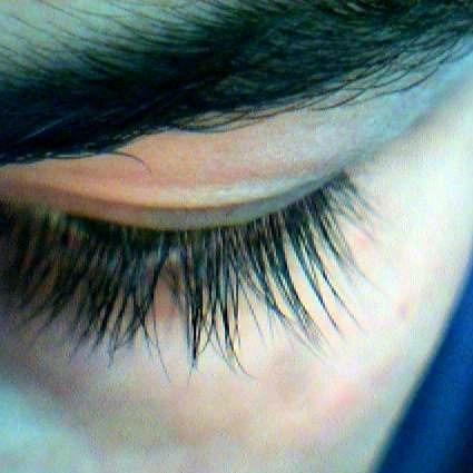 I cut my eyelashes by accident the tips but I have long eyelashes will they grow back to the normal lengh?