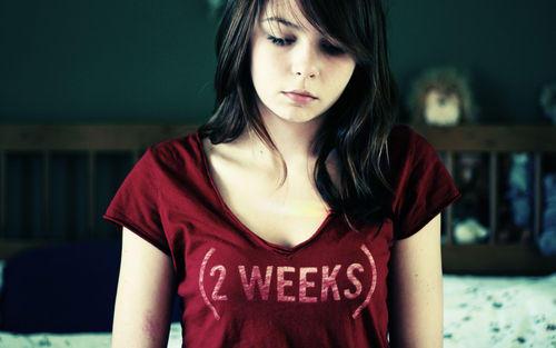 If i had my LMP november 18th when did i ovulate?