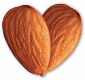 What nutrients can I get in almonds? Can I eat those withouse harming my body if I want to loose weight?