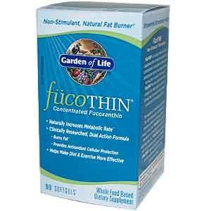 Hi currently I have been taking fucothin for more then 8month w/balance diet/exercises.Can i keep taking this pill for more than a year?