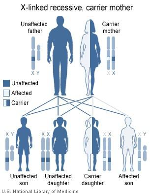 How is autosomal recessive inheritance different?