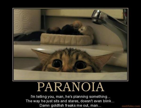 What kind of test can confirm that a person is paranoid? My husband is methamphetamine user and i think he is paranoid. What would I do to help him