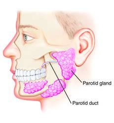 Sir...Parotid glands swelling will be  heal in HIV without medications?