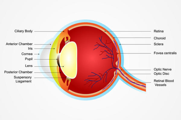 What besides a retinal tear would cause bright flashes of light in the corners of the  eyes?