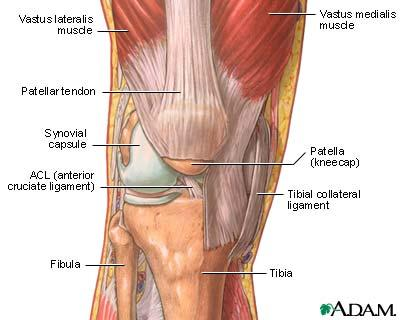 What does capsulitis mean in the knee joint?