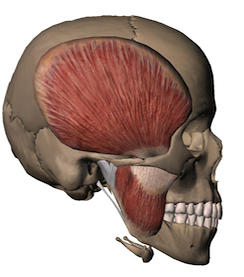 I clench my teeth in my sleep and now my jaw locks. Is this bad?