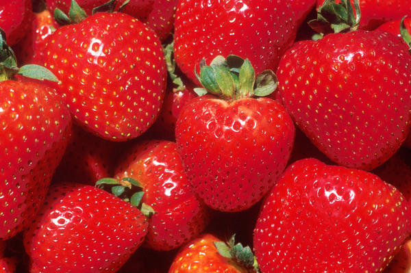 Will eating strawberries daily affect my bowels?