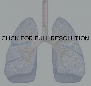 I've had COPD for 8 years now how long can a person live haveing this lung disease?