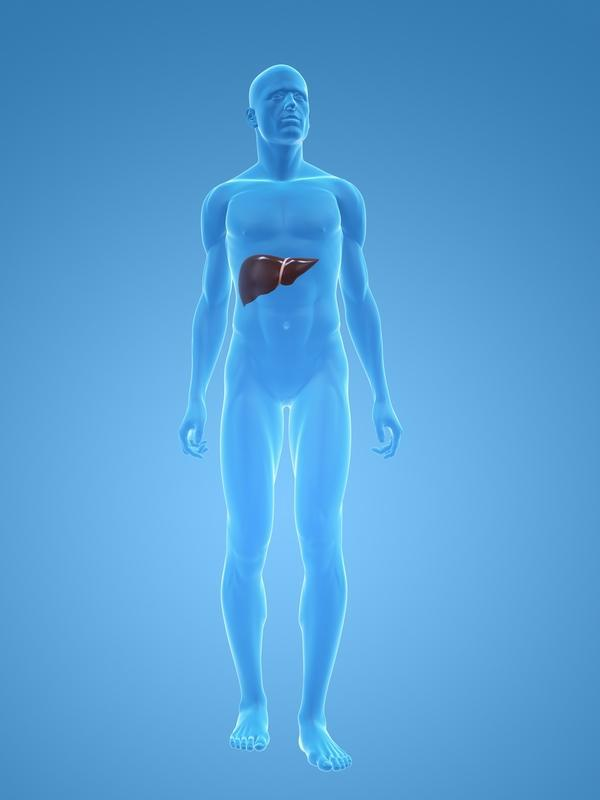 I have been experiencing dull pain and discomfort on my right side under bottom of ribs for quite some time. Liver?