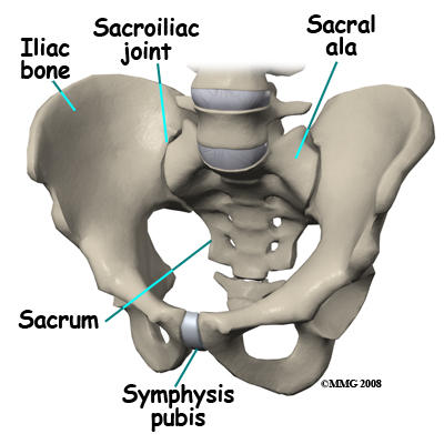 I have a serious pain in my pelvic bone?