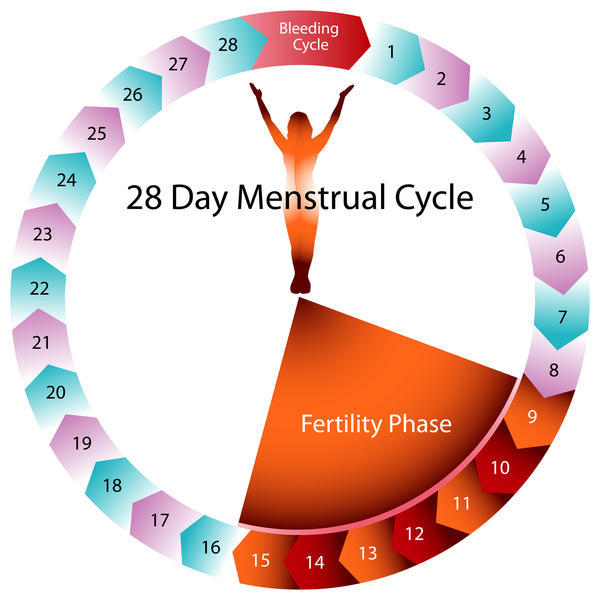 Can you get pregnant from precum days before your period?