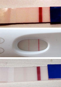 I'm anemic and period irregular pregnancy show faint positive test?
