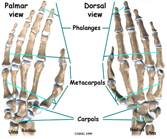 I broke my fifth metacarpal bone towards the joint yesterday. How can I speed up the healing process?
