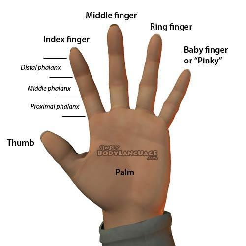 How to tell if you have a fractured finger?