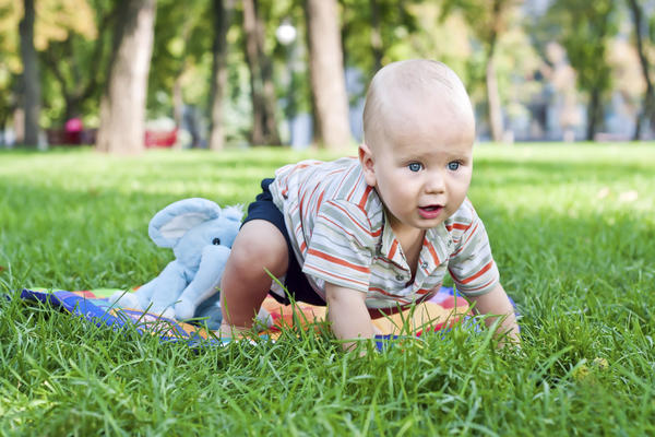 When do babies began to crawl?