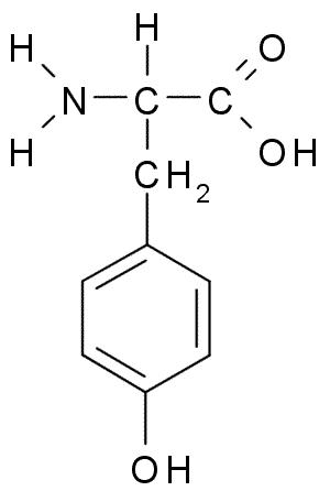 Can you tell me how I could convert the amino acid tyrosine to dopamine chemically ?