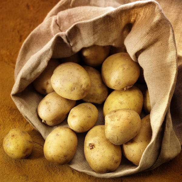 I am 8 weeks pregnan with twins I am extremely nauseous I can't keep much down i have started craving raw red potatoes is it bad for me to eat them?
