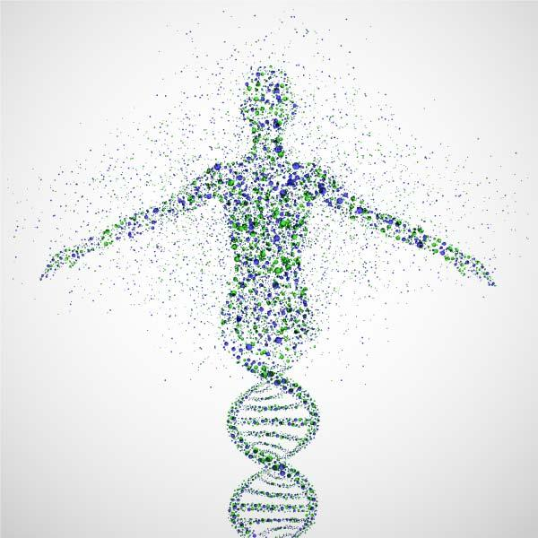 How much do genes determine health? Should we all check genomes?