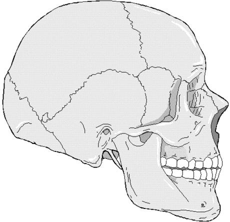 I have a crack or indention on the front of my skull that I know wasn't there the day before why is this is it a symptom of something ?