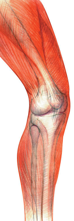 What is knock knee treatment?