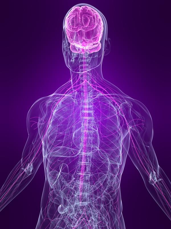 How does pinched nerve in the neck?