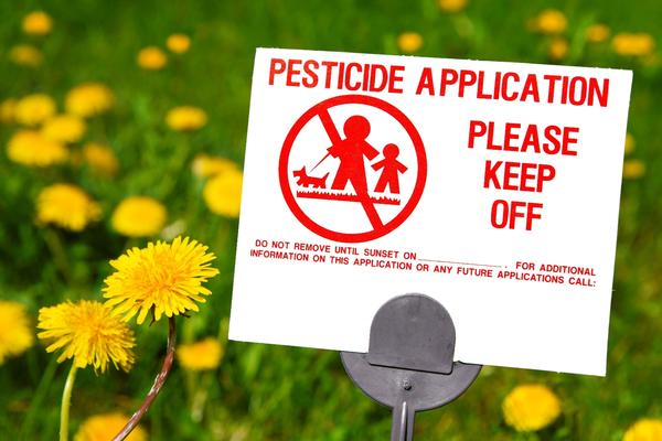 I work in a basement that has flies&ants. Today s.o sprayed pesticides there to kill them. I have headache&burning eyes. Pesticid. Poisoning? Pes. Harmful?