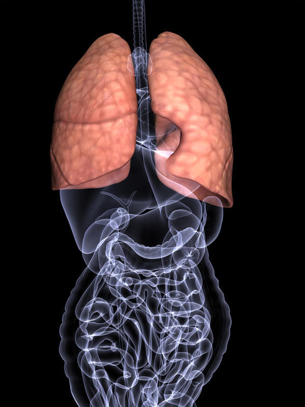 Does phlegm really get into our lungs when we swallow it? What happens to it then?