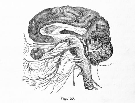 What to do if I had an operation of angiofibroma in brain 20years bfore after that I got seizures?