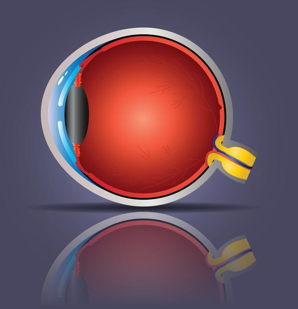 Can you tell me if I using corrective eye glasses, and if I remove the glass, what's the position of retina?