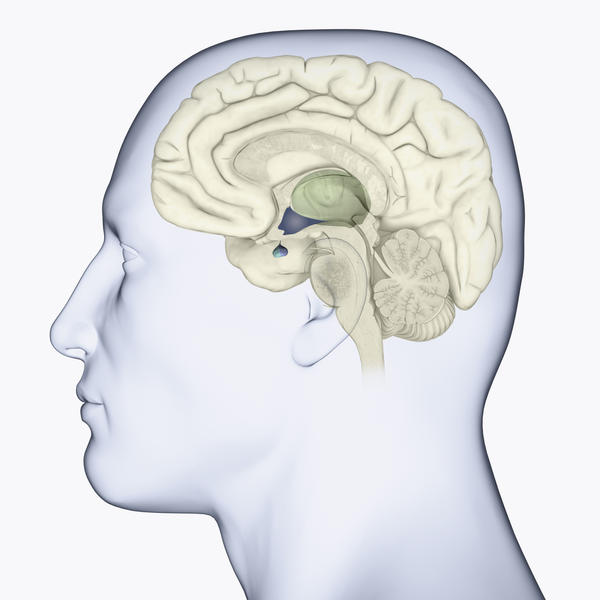 What is the definition or description of: pituitary adenoma?