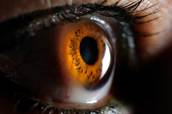 What is a cornea?