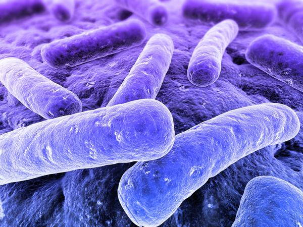 Are bacterial infections contagious?