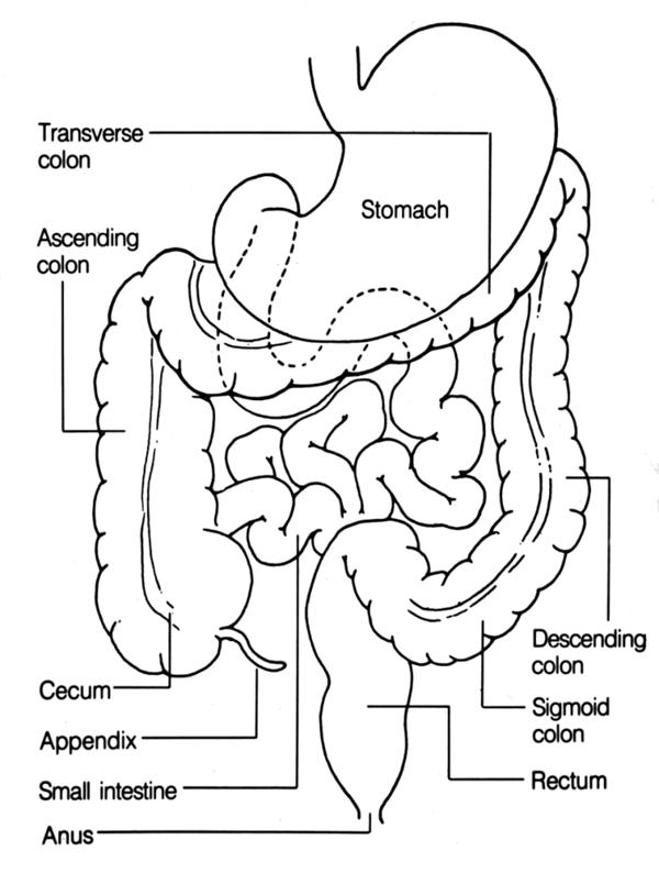What is moderate stool in ascending colon and splenic flexure but only minimal degree distally mean too my health?