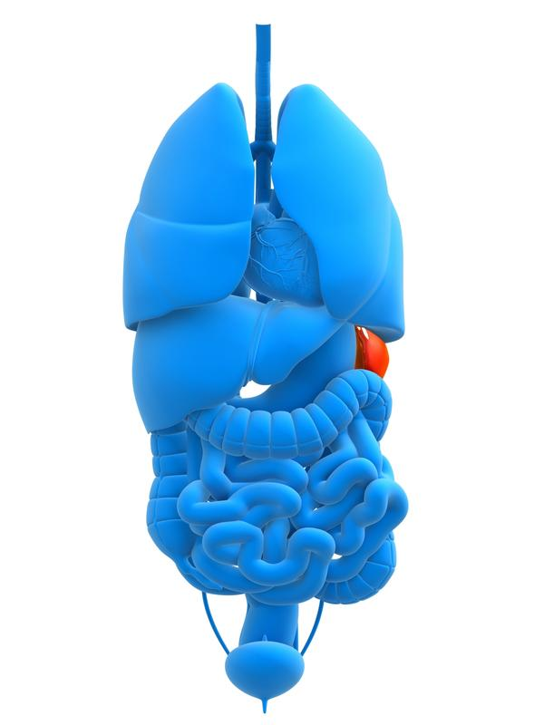 What are the side effects of gallbladder and spleen removal ?