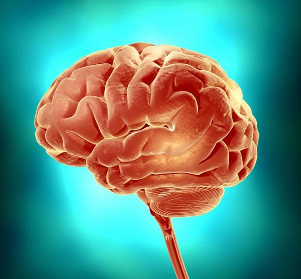 What are the effects of encephalitis on the hypothalamus?