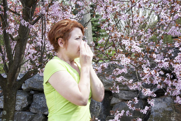 What are the different types of allergies?