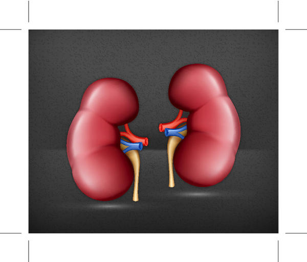 What causes the need for a kidney removal?