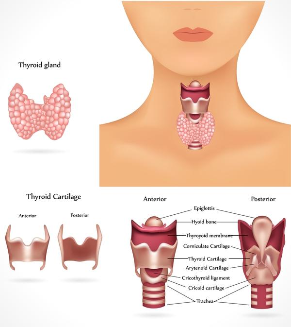 Can a thyroid cyst less than 1 cm cause blood in saliva?