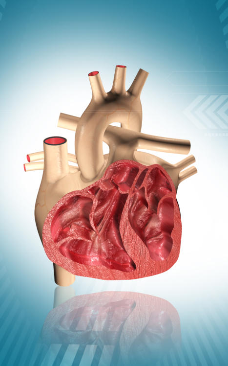 Is there any chance that the heart enlargement be back to normal if is treated?