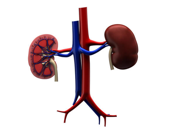 Can glutathione IV cause kidney problems?