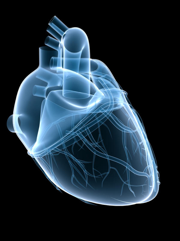 What would be a heart defect that affects the ventricles?