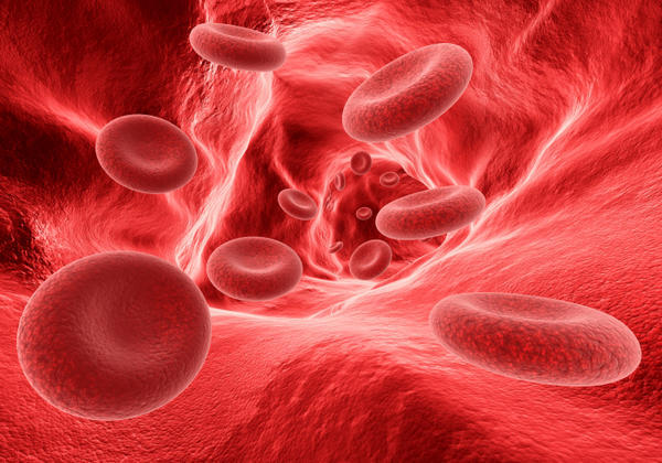 How can the human body prevent blood clotting in the normal vascular system?